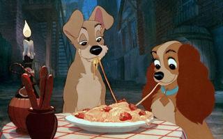 Можно ли давать макароны собаке?