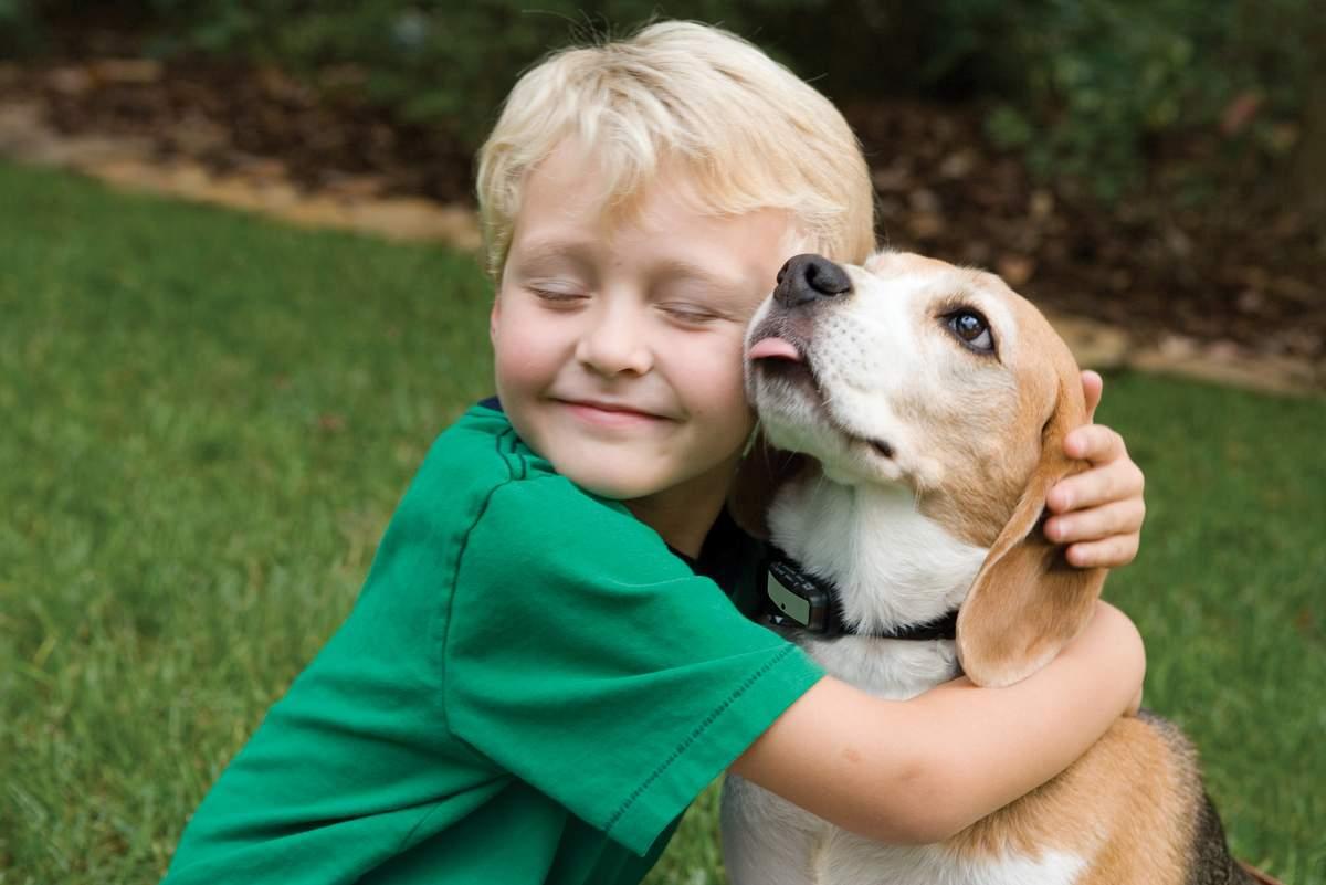 собака и ребенок на улице